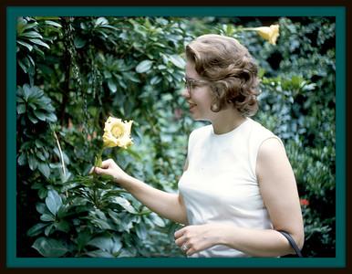 Busch Gardens - Cypress Gardens