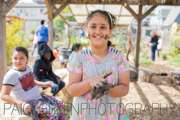 Green Schoolyards America