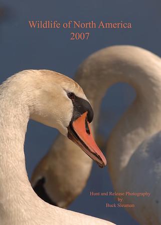 Wildlife of North America. 2007