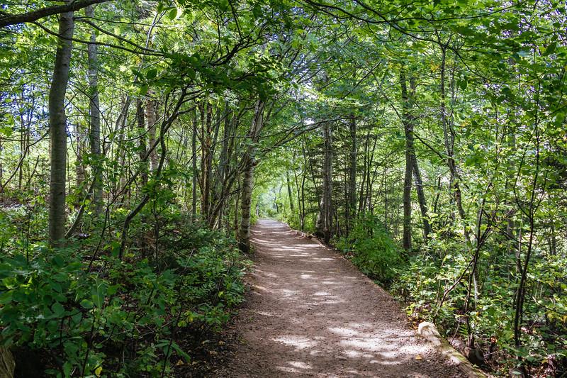 Explore Trails