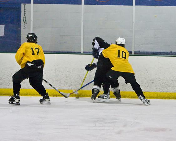 Windsor/Loveland/TV Ice Hockey vs Longmont 3-29-08