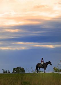Horses & Rodeo