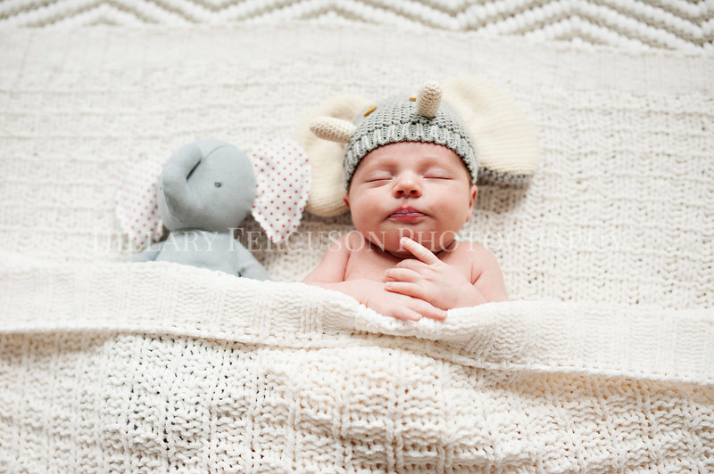 Hillary_Ferguson_Photography_Carlynn_Newborn033.jpg