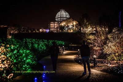 Lewis Ginter Festival of Lights ~ 2015