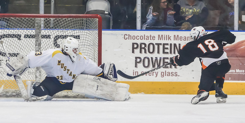 Hockey (7).jpg