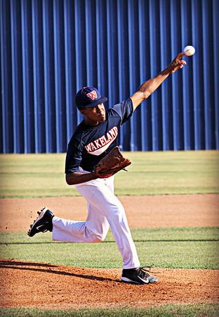 Wakeland Baseball Summer 2015