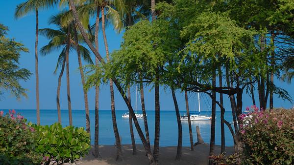 Anaehoomalu Bay - Lava Lava Beach Club