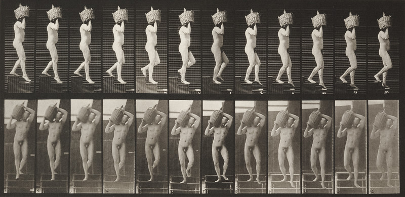 Nude man descending stairs (Animal Locomotion, 1887, plate 136)