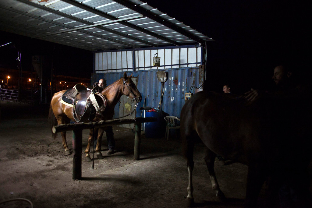 . Nadav, the chief cowboy of the Yonatan herd, gets his horse ready in the early morning, on a ranch just outside Moshav Yonatan, a collective farming community, about 2 km (1 mile) south of the ceasefire line between Israel and Syria in the Golan Heights May 21, 2013. REUTERS/Nir Elias