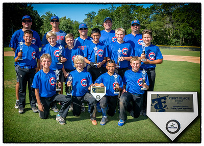 Cubs 2015 Team Pic
