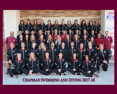 SWIMMING and DIVING Team Photo 2017-18