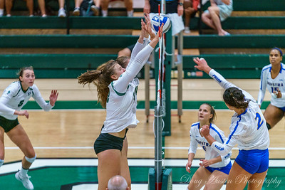 Hofstra vs Dartmouth Volleyball