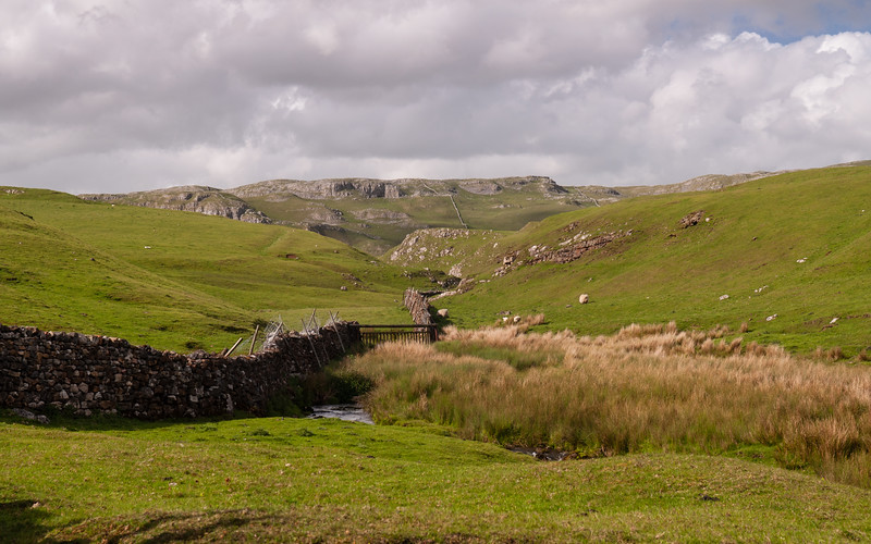 Langcliffe Scar and Scaleber Beck