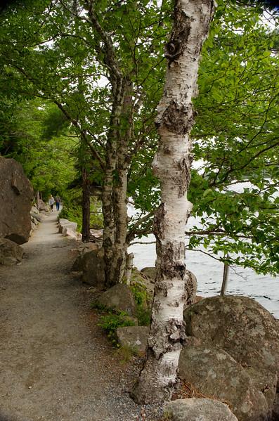 Acadia Nat'l Park-Terry's - July 2017-336.jpg