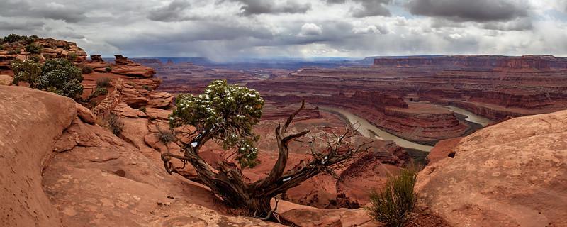 Western Panoramas