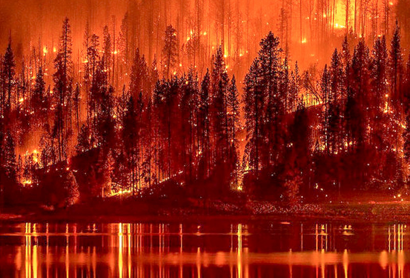 15._worst_year_for_wildfires-2.jpg