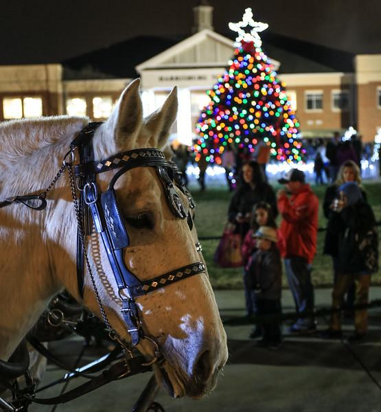2014 Dec - Harrisburg Christmas Tree Lighting-0152.jpg