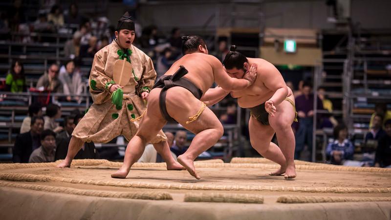 Osaka Sumo 220313 24 .jpg