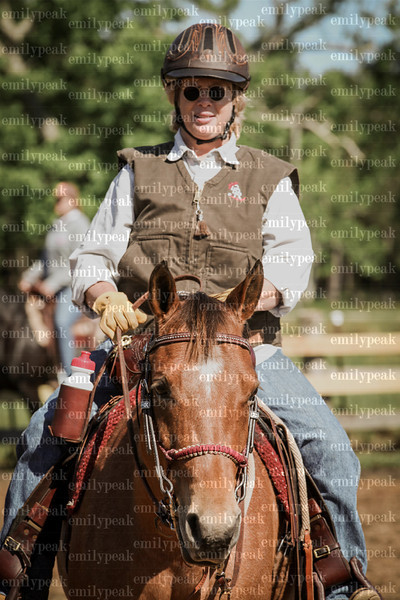 Ron Sullivan Clinic At Rawhide Stables