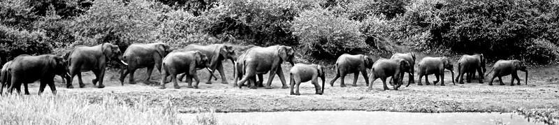 Kenya.Card1.02.2014 163