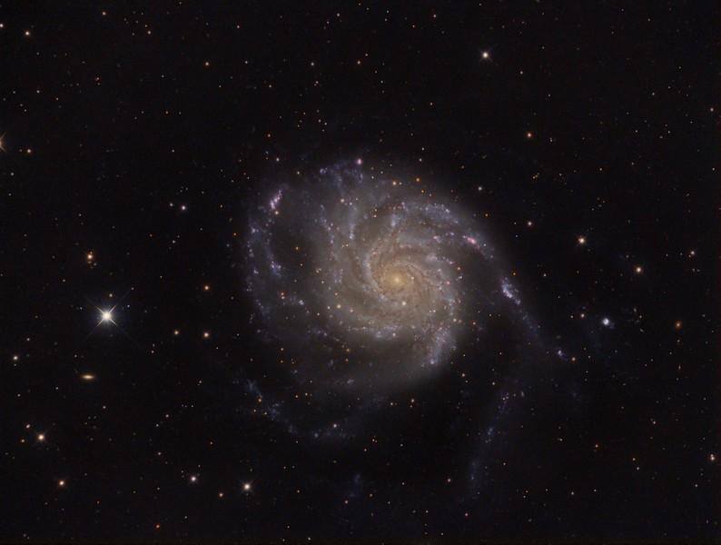 M101-OK-final5.jpg