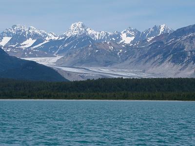 Alaska 2014 - Conepatus