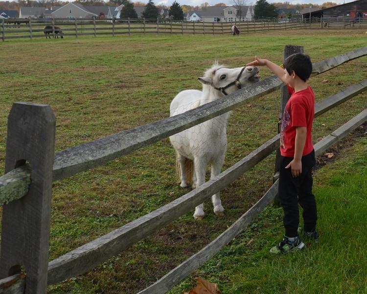 Gabe and white pony.JPG