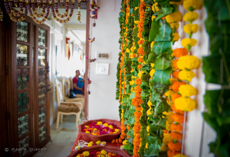 Jay Pooja Mehandi-106.jpg