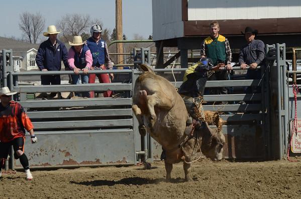 DSU Sat Perf - Bulls