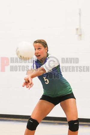 Girls JV Volleyball #5 - 2014
