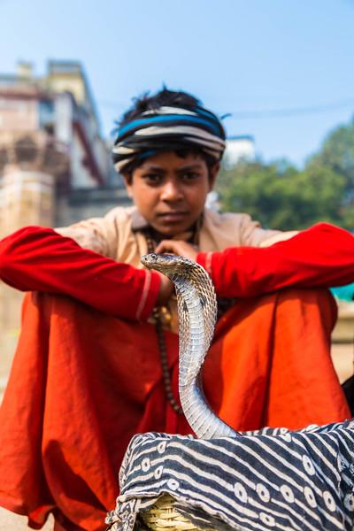 India-359.jpg