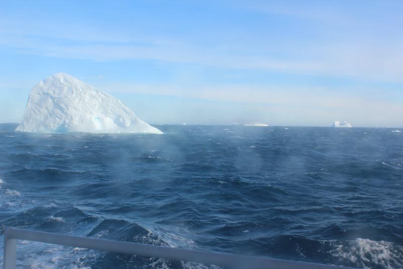 Antarctica 042.JPG