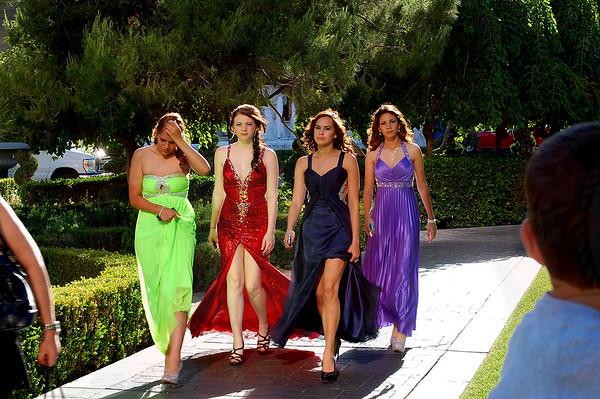 Rosa's 2014 Prom