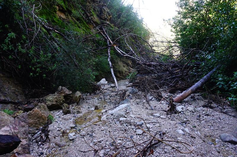 20160218072-Gabrielino Trail Scouting.JPG