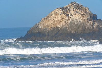 Ocean Beach / Seal Rocks, San Francisco - 8 Nov 2009