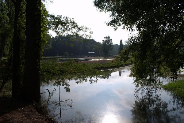 2010/07/11 - Park, Greeneway, Forest