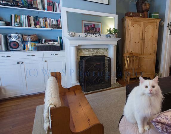 Airbnb Kirsten Prelim photos