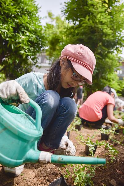 ICJC Garden Project-5333.jpg