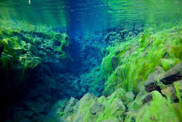 Silfra, Þingvellir