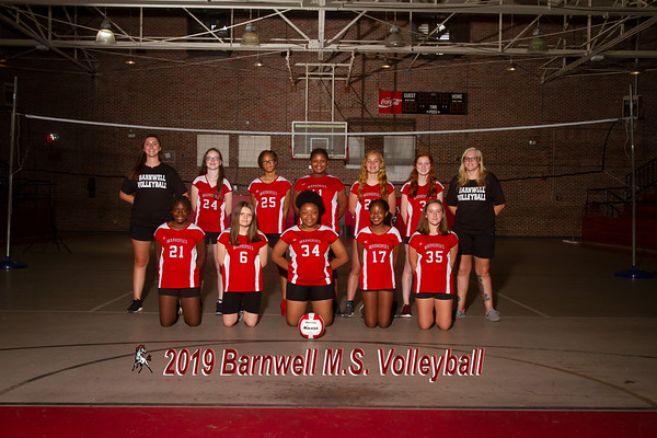 2019 MS Volleyball