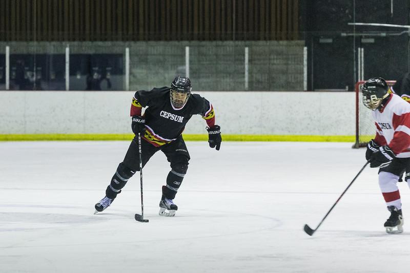 2018-04-07 Match hockey Thierry-0017.jpg