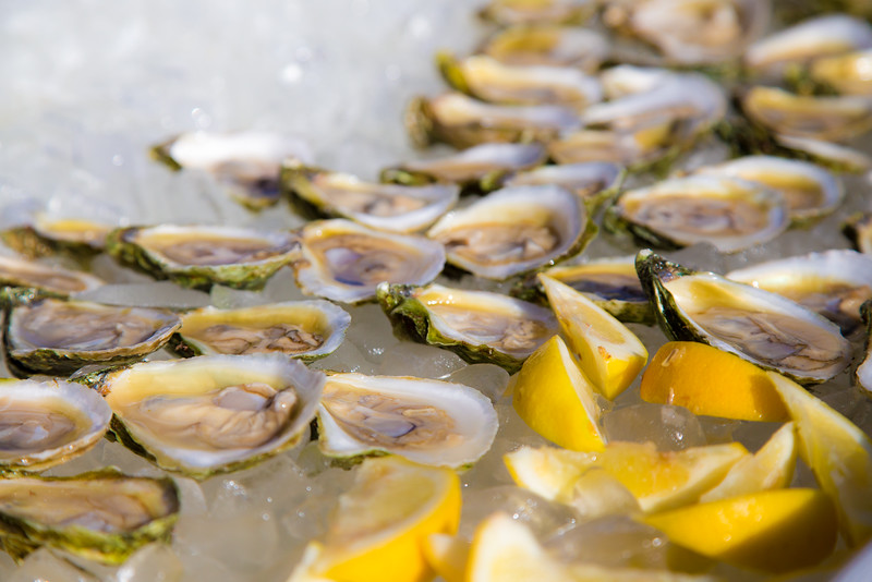 oysterfest-7527.jpg