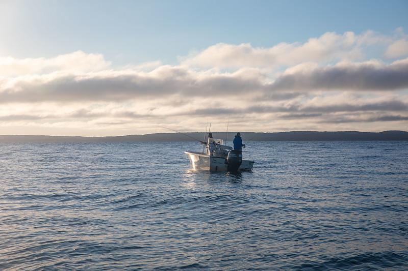 capecodfalsealbacoreflyfishing.fall18bcarmichael (22 of 44).jpg