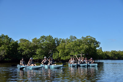 9AM Mangrove Tunnel Kayak Tour - Crabtree