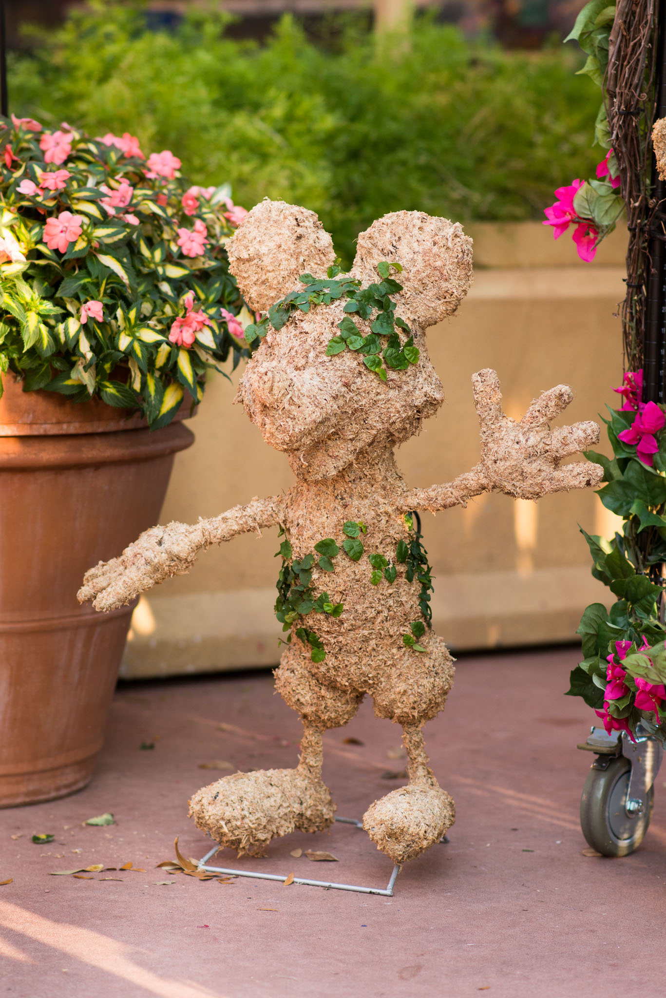 Large Planted Mickey Topiary - Epcot Flower & Garden Festival 2016