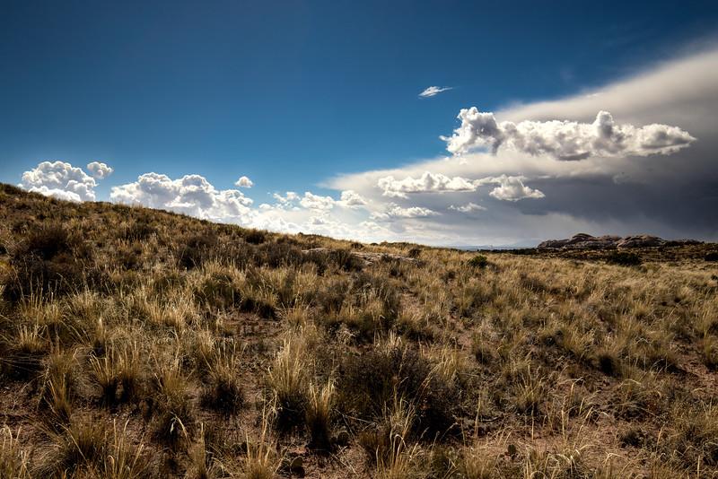 Canyonlands Landscape.jpg