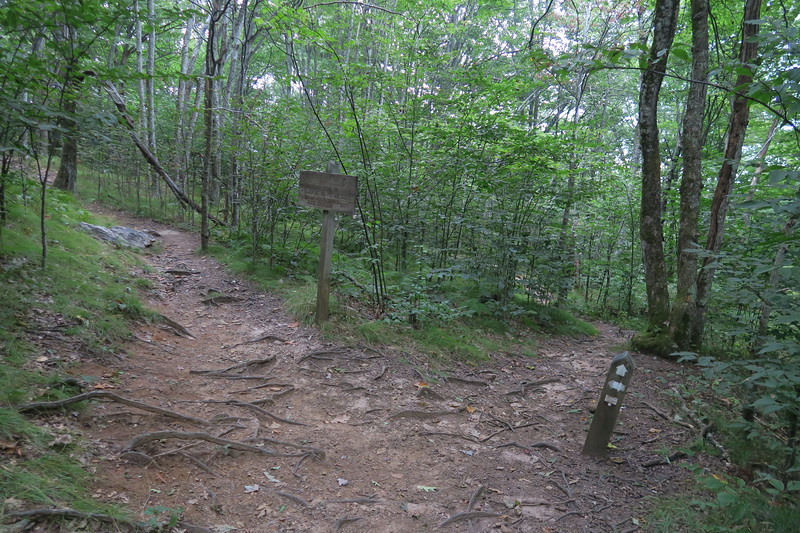 Mountains-to-Sea Access/Mountains-to-Sea Trail Junction
