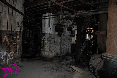 Extended Look: Mohawk Carpet Mill Power Plant