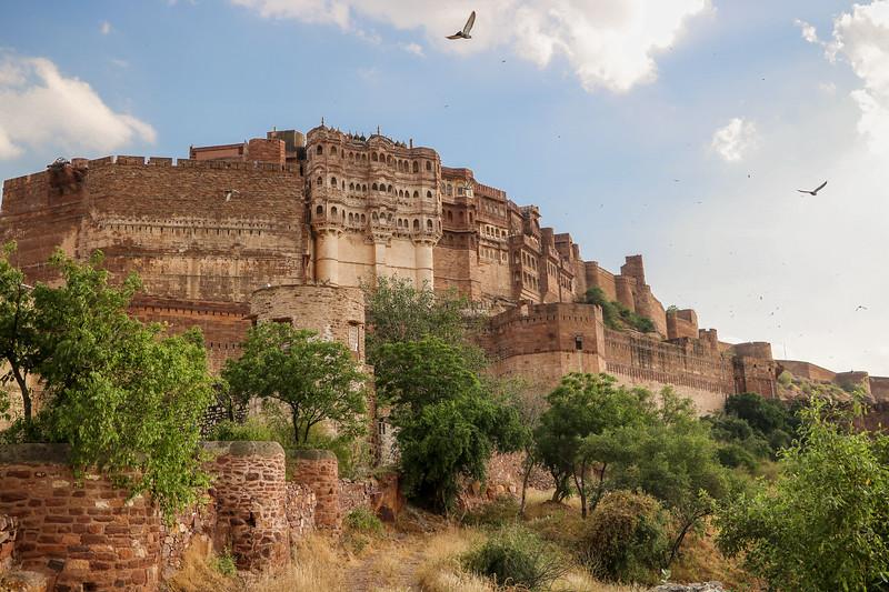 India-Jodhpur-2019-0095.jpg