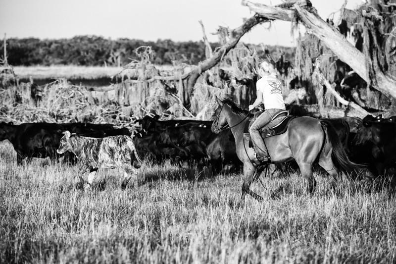 Breely Barthle Ranch B&W 3 (17 of 46).jpg